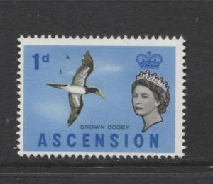 ASCENSION- Scott 75 - Bird - Brown Booby -1963 - MNH - Single 1d Stamp