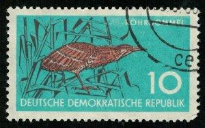 Bird (T-4906)