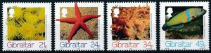 [I1489] Gibraltar 1994 Marina Life good set of stamps very fine MNH