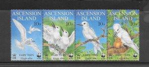 BIRDS - ASCENSION ISLAND #725-8  FAIRY TERN  WWF  MNH