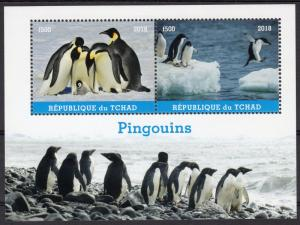 Chad 2018  Penguins in the Antarctic Souvenir Sheet Perforated MNH
