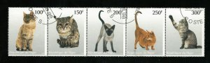 Animals, Cats (R-593)