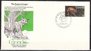Canada, Scott cat. 732. Eastern Cougar issue. First day cover. ^