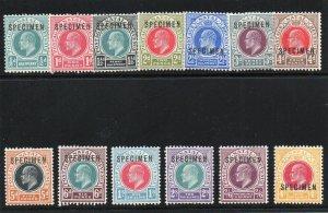 Natal 1902 KEVII complete SPECIMEN set (Samuel Type D12) MLH. SG 127s-139s.