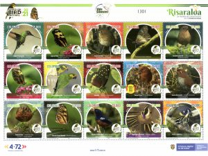 O) 2021 COLOMBIA, CONSERVATION OF BIODIVERSITY, BIRD WATCHING, BUTTERFLIES, R...