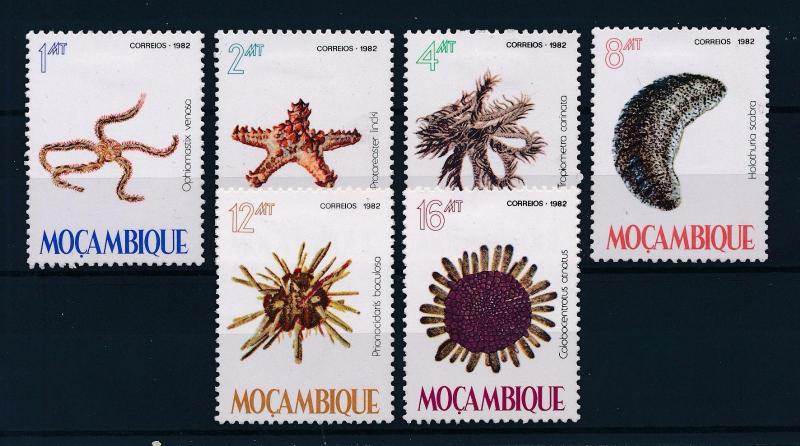 [60112] Mozambique 1982 Marine life Sea star MLH