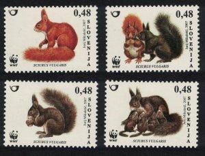 Slovenia Eurasian Red Squirrel 'Sciurus vulgaris' WWF 4v 2007 MNH SG#755-758