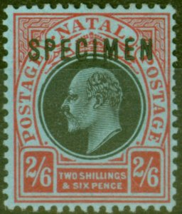 Natal 1908 2s6d Black & Red-Blue Specimen SG168s Fine & Fresh Mtd Mint