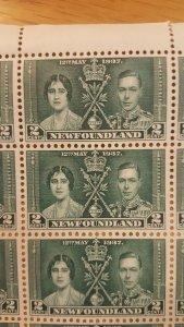 Newfoundland #230-2* NH Full sheets of 60 CV $588.00 Scarce!