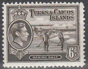 Turks & Caicos Islands #85A  MNH   (S9997)