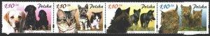 Poland. 2002. 3960-63. Dogs, cats, wolf, lynx. MNH.