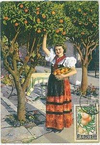 38745  - Algeria - POSTAL HISTORY -  MAXIMUM CARD   1957 - FRUIT: Oranges