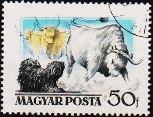 Hungary. 1956 50fi S.G.1449 Fine Used