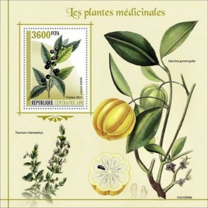 Central Africa - 2021 Medical Plants, Bay Laurel - Souvenir Sheet - CA210306b