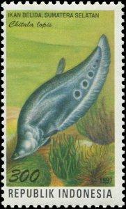 Indonesia 1997 Sc 1737a Fish Chitala Lopis