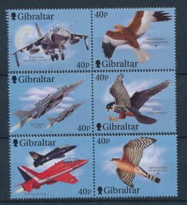 [29905] Gibraltar 2001 Birds Vögel Oiseaux Ucelli Fighter jets MNH