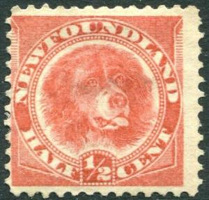 NEWFOUNDLAND-1887 ½c Rose-Red Sg 49 MOUNTED MINT V30307