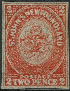NEWFOUNDLAND 1860 FLOWERS 2D ORANGE VERMILION NO GUM