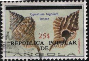 Angola 627 (used) 25e shells: Cymatium trigonum, ovptd (1981)
