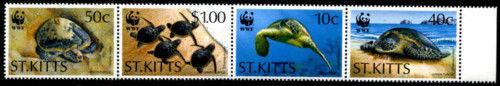 St Kitts 384a, MNH, Reptiles, Turtle WWF Folded. x3533