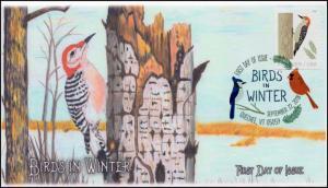 18-256, 2018, Birds in Winter, DCP Postmark, Red bellied Woodpecker, FDC