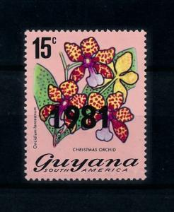 [79750] Guyana 1981 Flora Flowers Blumen Orchids with OVP 1981 MNH
