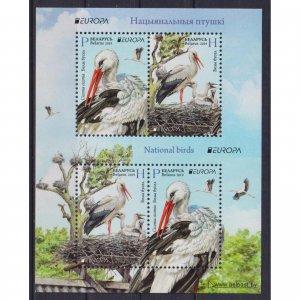 Belarus 2019 National birds  (MNH)  - Birds