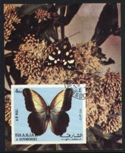 Sharjah & Dependencies   Air Mail  Butterfly NH VF  PD