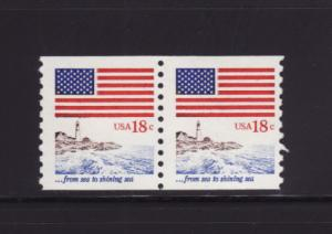 United States 1891 Coil Pair MNH Flags