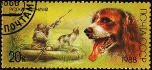 Russia.1988 20k S.G.5875 Fine Used