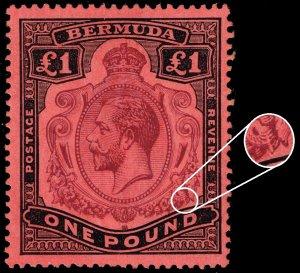Bermuda SG #55g King George V Gash in Fruit/Leaf; Unused (4Stars)