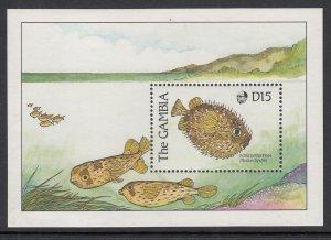 Gambia 895 Fish Souvenir Sheet MNH VF