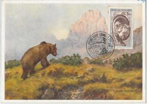 63509 - CZECHOSLOVAKIA - POSTAL HISTORY: MAXIMUM CARD 1957 -  ANIMALS: Bear