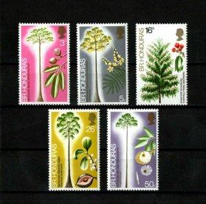 BRITISH HONDURAS - 1972 - QE II - HARDWOOD TREES OF BELIZE ++ MINT - MNH SET!