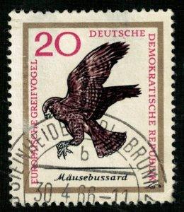 Bird (5149-Т)