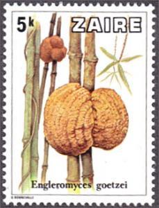 Zaire # 911 mnh ~ 5k Mushrooms