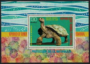 Eq. Guinea Giant Turtle South American Animals MS 130 Eq perf SC#77122