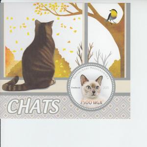 2015 Madagascar Cats SS (Scott NA) MNH