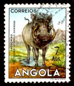 Angola 1953 African Wart Hog Wild Animals 7a Scott.377 Used (#7)