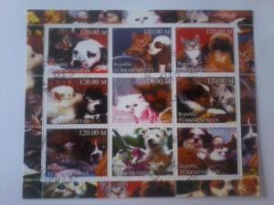 TURKMENISTAN SHEET USED DOMESTIC CATS