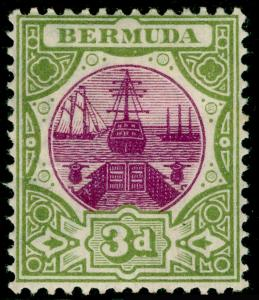 BERMUDA SG33, Dry Dock 3d magenta & sage-green, M MINT.