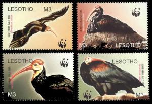 Lesotho WWF Southern Bald Ibis Birds 4v SG#1934-1937 MI#1895-1898 SC#1336 a-d