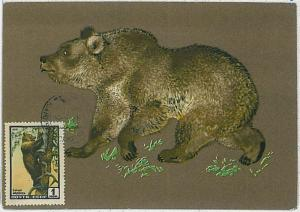 32184 MAXIMUM CARD - POSTAL HISTORY - Russia USSR:   Wild Animals, Hunting, 1961