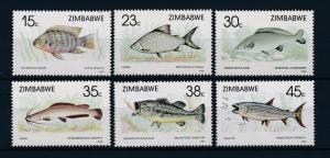 [47604] Zimbabwe 1989 Marine life Fish MNH