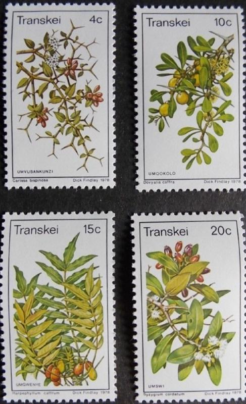 1978 Fruit MNH Stamps from South Africa (Transkei)