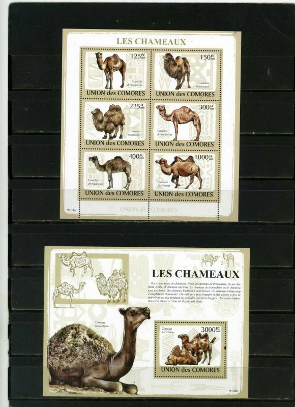 COMOROS 2009 FAUNA CAMELS SHEET OF 6 STAMPS & S/S MNH