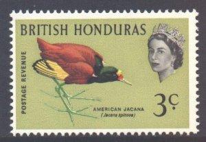 Br Honduras Scott 169 - SG204, 1962 Birds 3c MNH**