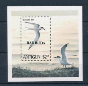 [52893] Barbuda 1980 Birds Vögel Oiseaux Ucelli with ovp Barbuda MNH Sheet