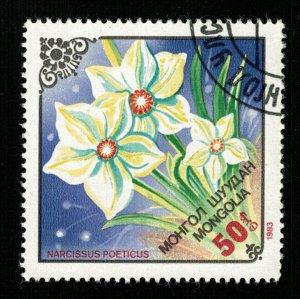 Flower, Mongolia (TS-2269)