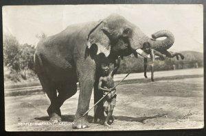 1930s Colombo Ceylon Picture postcard Cover To Paris France Temple Elephant